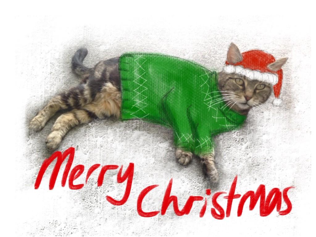 merry-xmas-cat